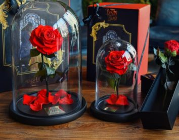 Beautiful roses that can last for up to three years without water and sunlight by Forever Rose